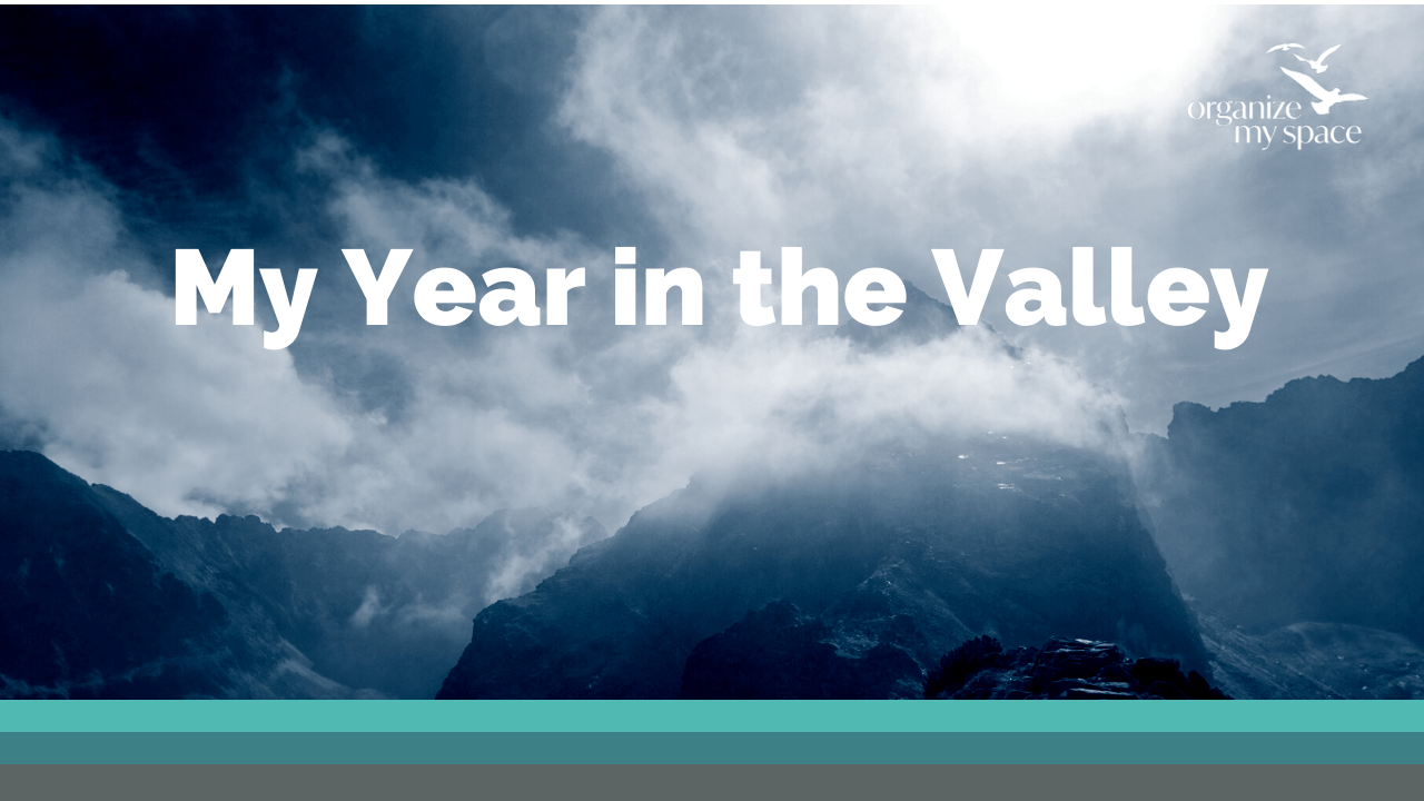 My Year in the Valley