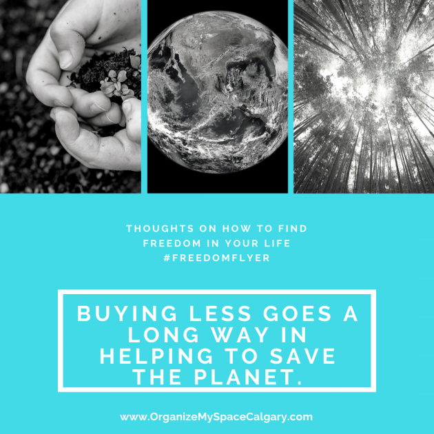 Buying Less Helps the Planet